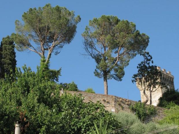 Image for Vicopisano